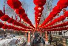 北京龙潭盛装迎春节庙会